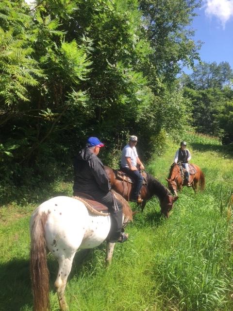 Horseback Riding at DAB